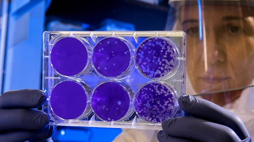 Coronavirus in Piemonte, nessun decesso nella giornata di oggi. Salgono a 25.448 i guariti