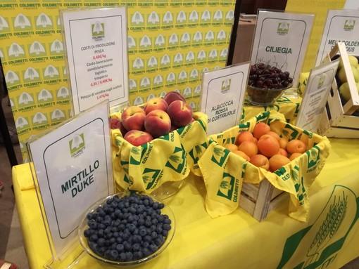 Coldiretti, trend positivo per l'export Made in Piemonte