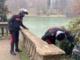 Ragazza aggredita e rapinata dell'iPhone al Valentino: il malvivente nascosto dietro un cespuglio