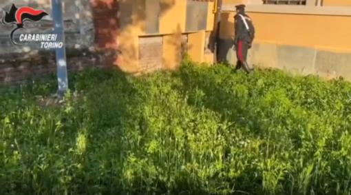 Cocaina a pochi passi dalla Maratona, nonostante il lockdown: in manette due giovani pusher [VIDEO]