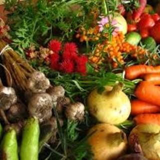 """Coronavirus, Coldiretti: """"Sostegno agli indigenti con i prodotti alimentari Made in Piemonte"""""""