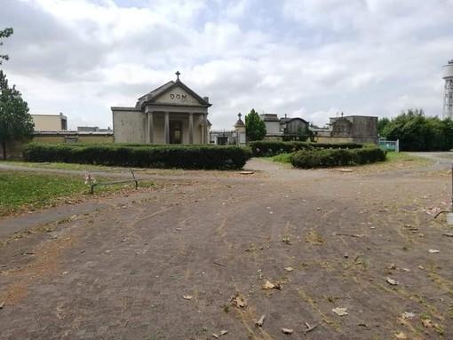 """Alberi abbattuti al cimitero di Nichelino, i Verdi insorgono: """"Inaccettabile"""""""