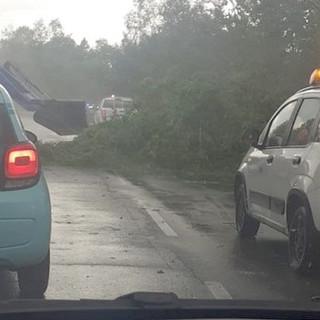 """Clima """"pazzo"""" a Torino: temporale simil tropicale poi torna subito il sole. Grandinata nel Chivassese [VIDEO]"""