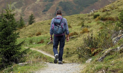 uomo di spalle che cammina lungo un sentiero