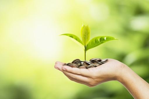 Ecobonus 2020: per i cittadini piemontesi il Codacons mette a disposizione uno staff tecnico specializzato