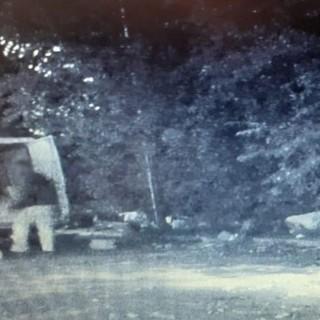 immagine telecamere moncalieri