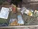 Parella, vetrina-tributo per Felice Gimondi in Piazza Chironi