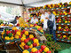 Il Consiglio metropolitano chiede l'istituzione del distretto del cibo del Chierese e Carmagnolese