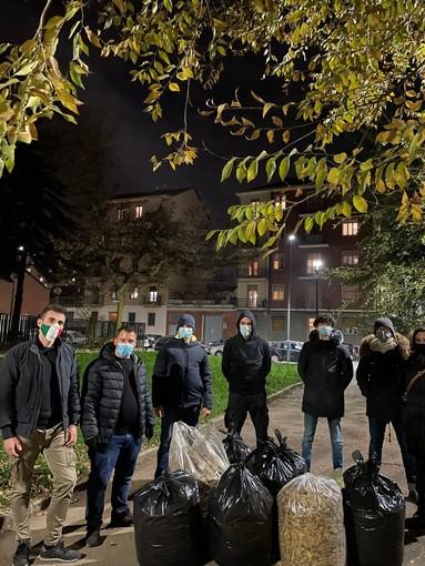 In strada per pulire le foglie secche: l'iniziativa di Fdi e Aliud