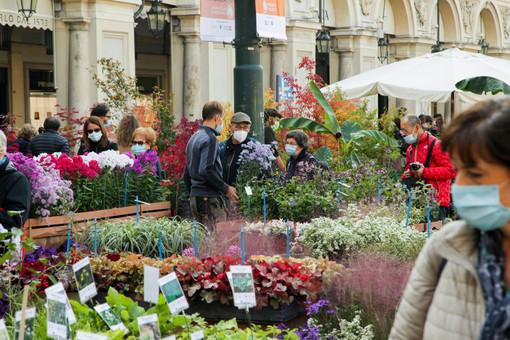 Da venerdì a domenica Torino si colora con l'edizione primaverile di Flor