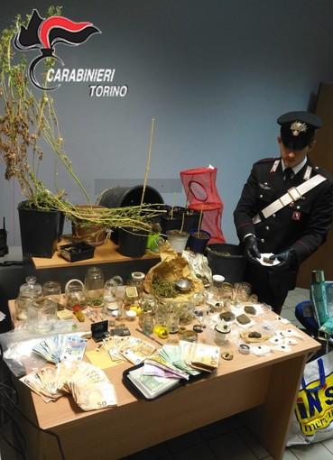 """La droga era """"bio"""", ma comunque illegale: il giardiniere pusher finisce in manette [VIDEO]"""