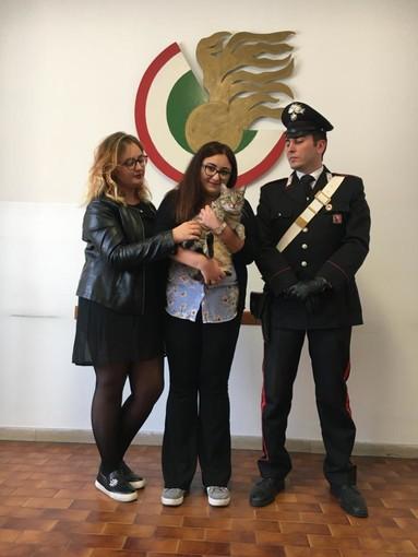 Torino, trova gatto e chiede un riscatto per restituirlo: arrestata