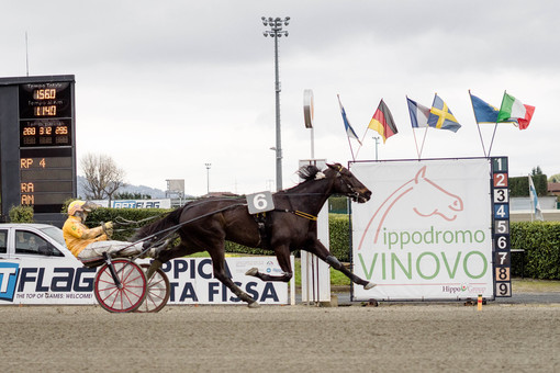 Vinovo ritrova la sua Champions: all'ippodromo la fine dell'estate restituisce il Gran Premio Costa Azzurra