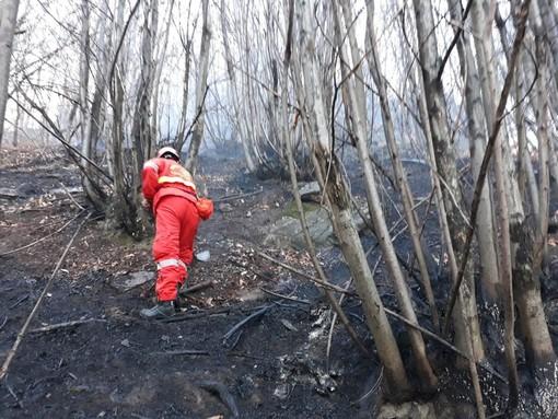 Giornata di interventi per i volontari antincendi boschivi: da martedì raddoppiato il presidio con elicottero