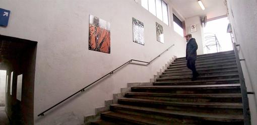 Alcune delle opere che è possibile ammirare in stazione