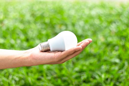 Raccolta RAEE, nel 2020 in Piemonte riciclate 128 tonnellate di lampadine esauste