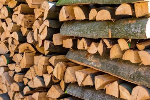 Un webinar sul valore della filiera del legno nel settore delle costruzioni