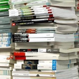 """Una legge per contrastare la discriminazione sui libri di scuola: """"Torino sia capofila"""""""