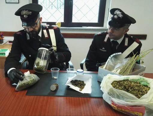 Castellamonte, trovato con 240 grammi di marijuana: denunciato