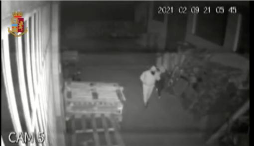 Così la banda assaltava i magazzini di alcolici e prodotti ittici: 100mila euro il bottino - VIDEO