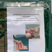 cartello nichelino