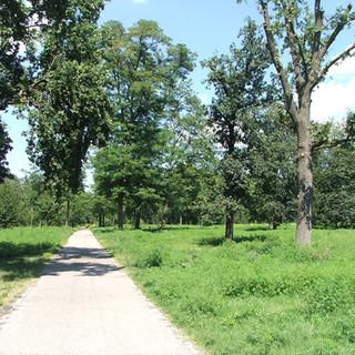 parco del boschetto di nichelino