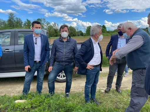 I terreni del Canavese devastati dai cinghiali, la visita dell'assessore Protopapa agli agricoltori