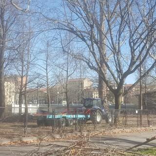 Verde pubblico, 950 mila euro per la messa in sicurezza del parco Michelotti