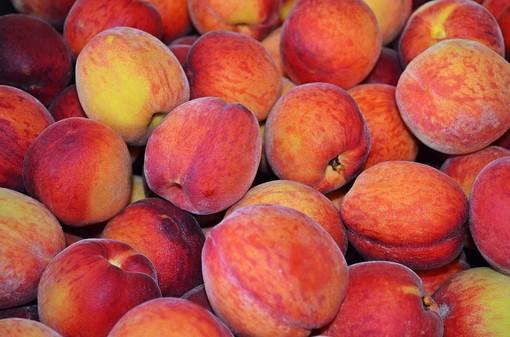"""Raccolta frutta, l'allarme di Coldiretti: """"Comprare le pesche 1 euro al chilo vuol dire farsi complici dello sfruttamento"""""""