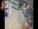 Rapina alla farmacia Dutto di corso Giulio, arrestato il rapinatore (VIDEO)