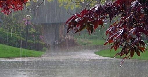 La pioggia battente crea disagi e allagamenti a Beinasco e Moncalieri