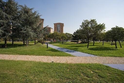 Un pomeriggio per pulire il parco Colonnetti dai rifiuti