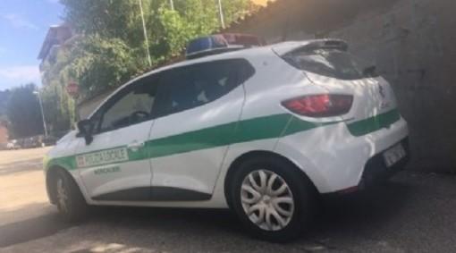 auto polizia locale di moncalieri