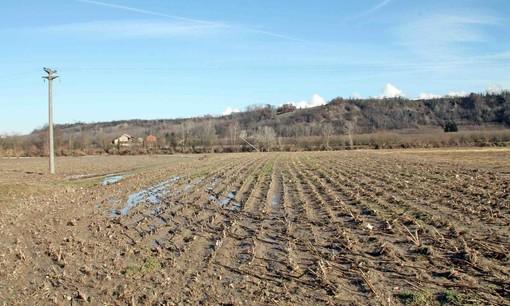 Confagricoltura Piemonte, appello alla Regione per scongiurare la siccità