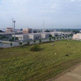 A Nichelino un nuovo sito di stoccaggio alimentare: in arrivo 200 posti di lavoro