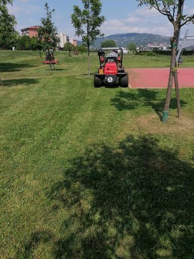 Venaria cerca sponsor per valorizzazione e manutenzione di rotonde e verde pubblico