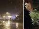 Violento temporale a Torino, decine di alberi caduti in strada: chiuso corso Giulio Cesare