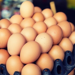 Da Alba a Torino, una donazione di 180 uova per i senzatetto di due dormitori