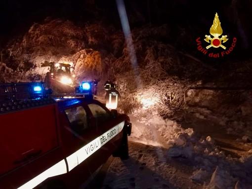 Nevicate abbondanti in quota: i vigili del fuoco in azione per rimuovere gli alberi pericolanti. Disagi verso il Moncenisio: chiusura a Giaglione [FOTO]