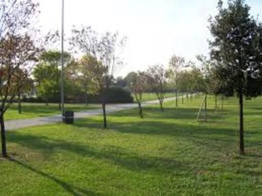 Manutenzione al Parco delle Vallette