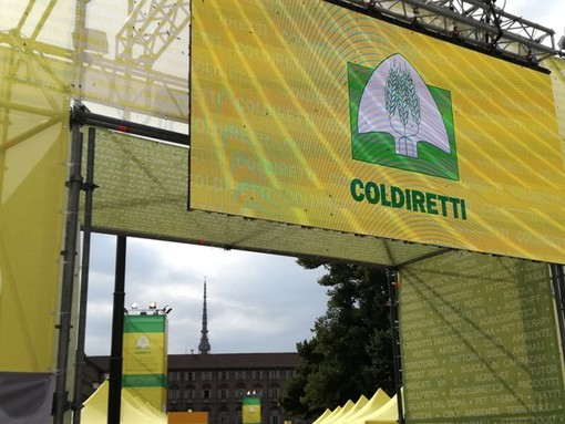 """Coldiretti: ''Urgente approvare legge per proteggere territorio piemontese"""""""